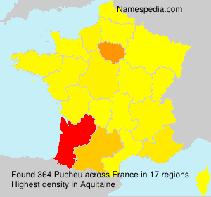 Surname Pucheu in France