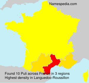 Surname Puli in France