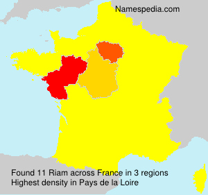 Surname Riam in France