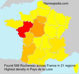Surname Rochereau in France