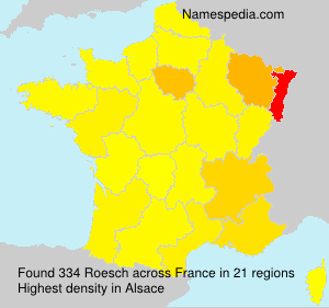 Surname Roesch in France