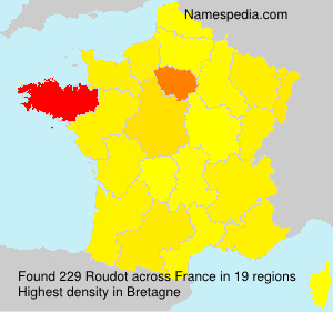 Surname Roudot in France