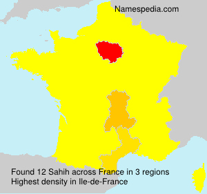 Surname Sahih in France