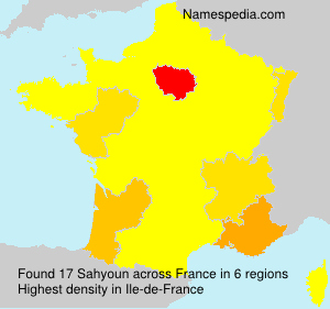 Surname Sahyoun in France