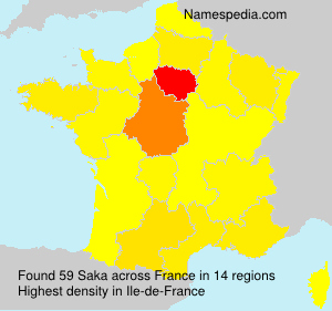 Surname Saka in France