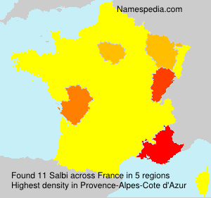 Surname Salbi in France