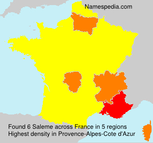 Surname Saleme in France