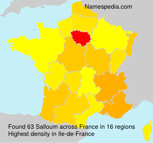 Surname Salloum in France
