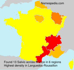 Surname Salvio in France