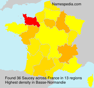 Surname Saucey in France