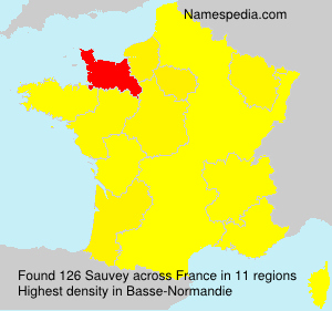 Surname Sauvey in France