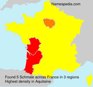 Surname Schmale in France