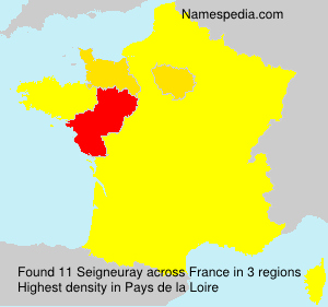 Surname Seigneuray in France