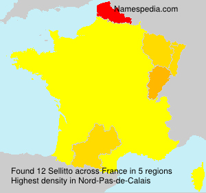 Surname Sellitto in France
