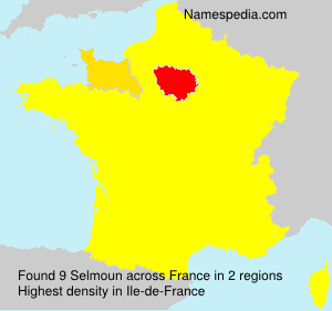 Surname Selmoun in France