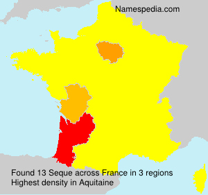 Surname Seque in France