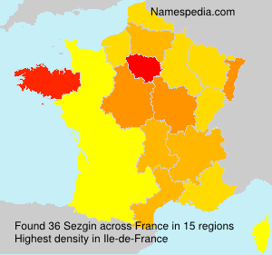 Surname Sezgin in France