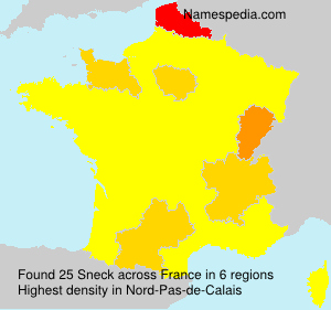 Surname Sneck in France