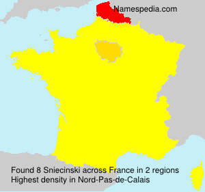 Surname Sniecinski in France