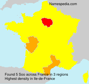 Surname Soo in France