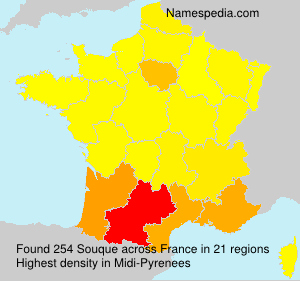 Surname Souque in France