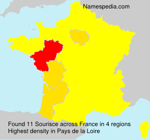 Surname Sourisce in France