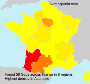 Surname Sous in France
