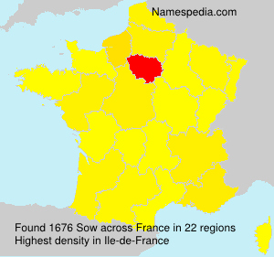 Surname Sow in France