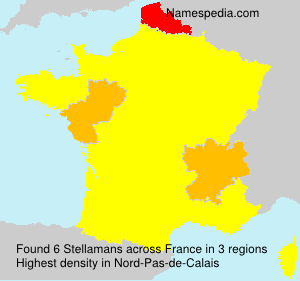 Surname Stellamans in France