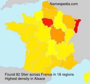 Surname Stier in France