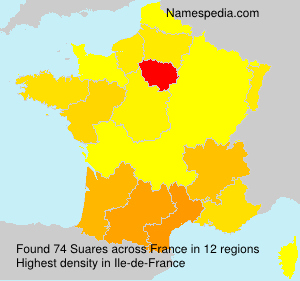 Surname Suares in France