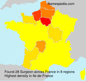 Surname Surgeon in France
