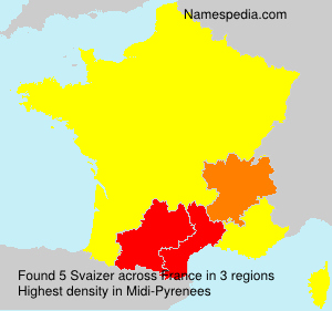 Surname Svaizer in France