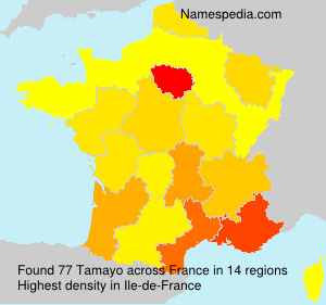 Surname Tamayo in France