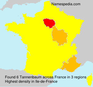Surname Tannenbaum in France