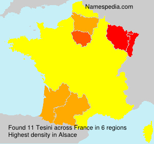 Surname Tesini in France