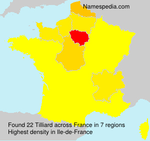 Surname Tilliard in France
