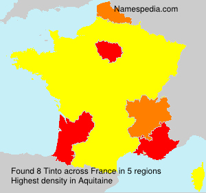 Surname Tinto in France