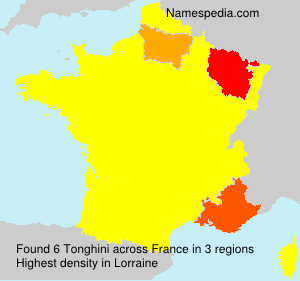 Surname Tonghini in France