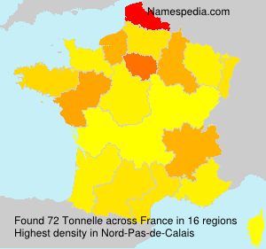Surname Tonnelle in France