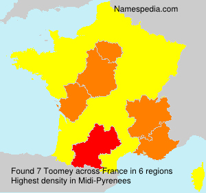 Surname Toomey in France
