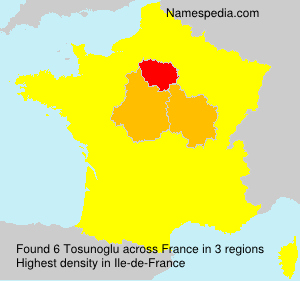 Surname Tosunoglu in France