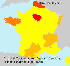 Surname Toutouh in France