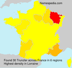 Surname Trunzler in France
