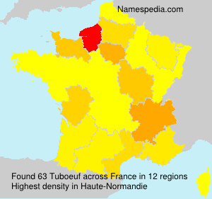 Surname Tuboeuf in France