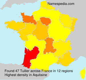 Surname Tuilier in France