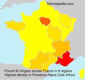 Surname Ungaro in France