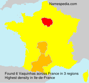 Surname Vaquinhas in France