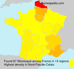 Surname Wanecque in France