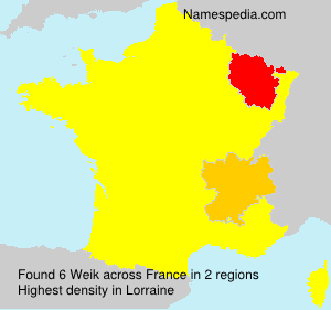 Surname Weik in France